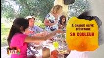 Saveurs d'Olives Saveurs d'Espagne - Episode 2