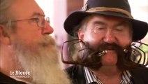 Le championnat du monde de barbes et moustaches s'est tenu en Allemagne