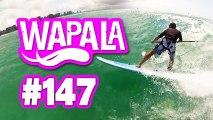 Wapala Mag N°147 : SUP à Hawaii, Wiley 8 ans à Hookipa, windsurf à Tenerife, kitesurfeuse de charme