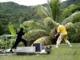 konfoula le ninja harry contre lama,nunchaku.