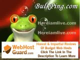 Guide : YouTuber Deal - Website Design and Hosting  Free seo tools on bulkping for Site Search