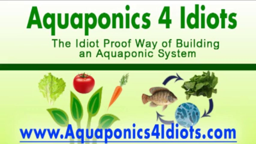 Aquaponics Made Easy – Way of Building an Hydroponics System