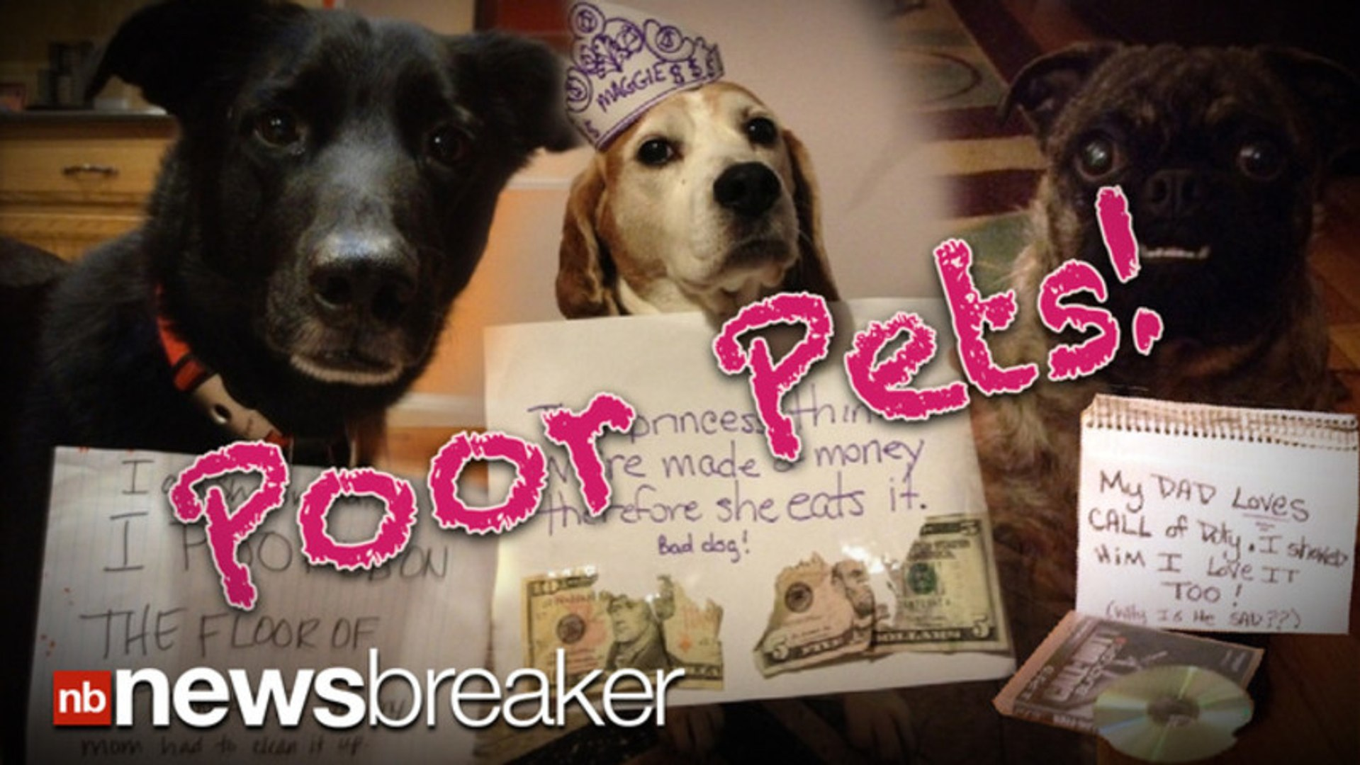 POOR PETS!: Vets Shame Owner for Taking Funny Pictures and Hurting Pet?s Feelings