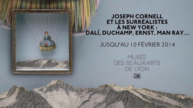 Comprendre l'expo Joseph Cornell