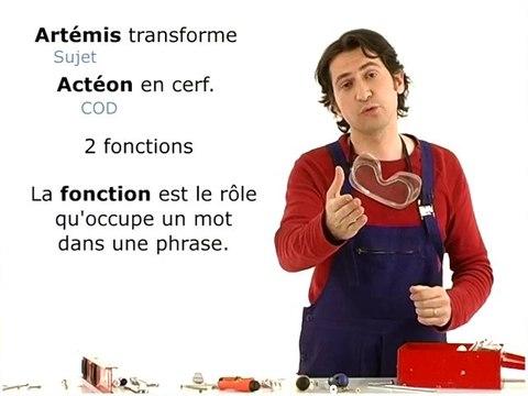 Français Grammaire : COD, COI et COS