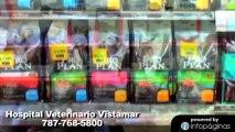 Hospital Veterinario Vistamar - Veterinarios Carolina