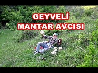 Mantar Avcısı Aziz Yavuz Geyve Sakarya