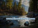 Sakal Çıkarıcı Minoxidil
