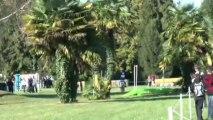 LES  W-D.D. MICHOU NEWS - 27 OCTOBRE 2013 - COMPETITION - LE CROSS DES PONEYS DU CONCOURS HIPPIQUE INTERNATIONAL DE PAU.