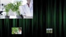 ECOFFAGRI, Département Etudes Agricoles d' Ecoffensive
