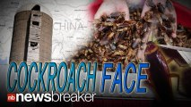 China Bringing in Big Bucks Selling Cockroaches to Cosmetic Companies