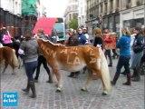 Cavaliers et poneys manifestent à Troyes contre la TVA à 20%