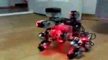 RoboBuilder 5720T RQ 'Il est gentil le toutou'.mp4