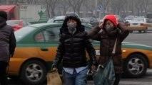 Oms: inquinamento atmosferico una delle prime cause di cancro