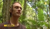 Ornithologie  les espèces endémiques de Tahiti en voie d'extinction
