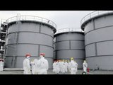 Fukushima radiation leak: TEPCO admits contaminated water leaked from tank
