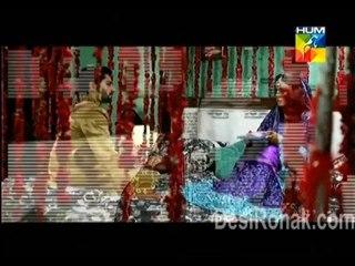 Shareek e Hayat (Tumhara Sath Jo Hota) - Episode 1 - November 17, 2013 - Part 1