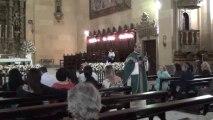 33º DOMINGO DO T. C. ANOC Homilia do Frei Petrônio.
