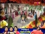 Ee Tharam Illalu 19-11-2013   Maa tv Ee Tharam Illalu 19-11-2013   Maatv Telugu Episode Ee Tharam Illalu 19-November-2013 Serial