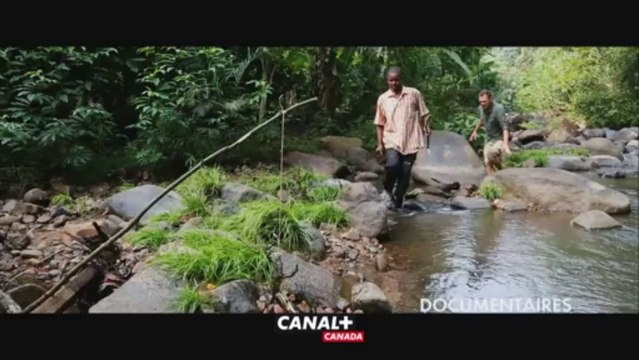 Bande-annonce Pass CANAL+