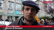 Saint-Brieuc. Manifestation des éleveurs d'ovins et caprins