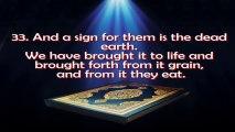 Surah Ya-Sin by Mishary Al Afasi ( Complete Surah)