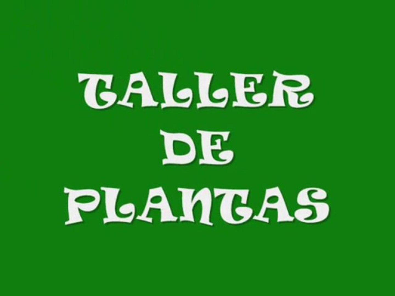 TALLER DE PLANTACIONES