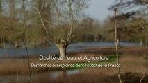 Qualité de l'eau et agriculture: démarches exemplaires dans l'ouest de la France.