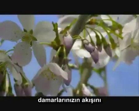 Allah'ı anlatan güzel bir şarkı