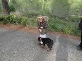 Dressage canin comportementaliste la ciotat 13600 Justine(6ans) et Izia- Hiérarchisation de l'enfant par l'éducation