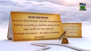 Documentary Blessings Of Ummul Momineen Safiya
