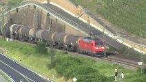 Züge und Schiffe Bopparder Hamm,DB 203,152,101,SBB Re421, DB 185,Railion 185,Alpha Trains 185, 460