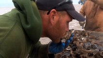 Texas drought having major impact on oyster industry