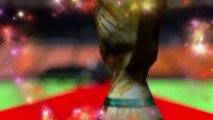 Coupe du Monde de foot 2014: Le coût de la Coupe