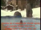 La bamba triste_Pierre Billon