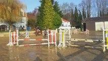 Concours d'obstacles au Wotaland, Braine-L'Alleud, le 1er décembre 2013