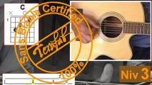 Love me tender - Elvis Presley [Tuto Guitare] by Terafab