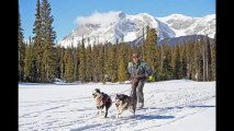 Yoo Hoo! Winter is here again - Time to make the most of the Snow | Winter Sports and Activities