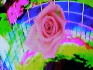 bEEdEEgEE - Flowers (ft. Lovefoxxx)