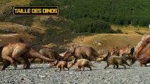 Sur la Terre des Dinosaures - Fiches Dinos - Taille des dinos [VF|HD]