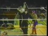 Hijo del Santo/Rey Mysterio/La Parka/Octagon vs. Blue Panther/Fuerza Guerrera/Psicosis/Pentagon - AAA TripleMania III - B