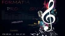 Formatia Progresiv Medgidia - Hai la joc, la joc - 2013