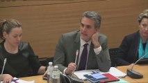 Délégation droits des femmes - Assemblée Nationale - audition du Ministre du Travail - intervention du député Denaja