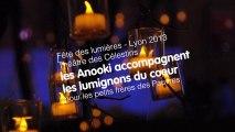 Fête des Lumières - Lyon 2013 - Les Anooki sur le théâtre des Célestins.