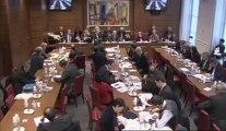SEPARATION ET REGULATION DES ACTIVITES BANCAIRES (représentants de la fédération bancaire française) - Mercredi 30 Janvier 2013