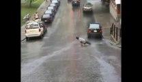Longboarder Fails under the rain... so so violent crash