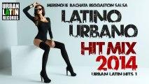 Latino Urbano VIDEO HIT MIX 2014 1 (Merengue, Bachata, Reggaeton, Salsa, Cumbia)