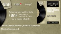 André-Jaques Andrieu, Bernard Dumortier - Chants d'insectes, pt. 2