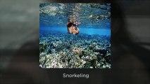 Scuba Diving Lessons, Padi Dive Shops Denver, CO | 303-220-8282 – Call | Underwater Phantaseas