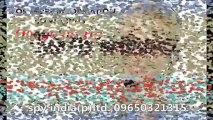 SPY CAMERA IN Delhi NCR, Noida, Faridabad, Gurgaon, Ghaziabad,  Call US :- 09650923110, www.spyindia.net